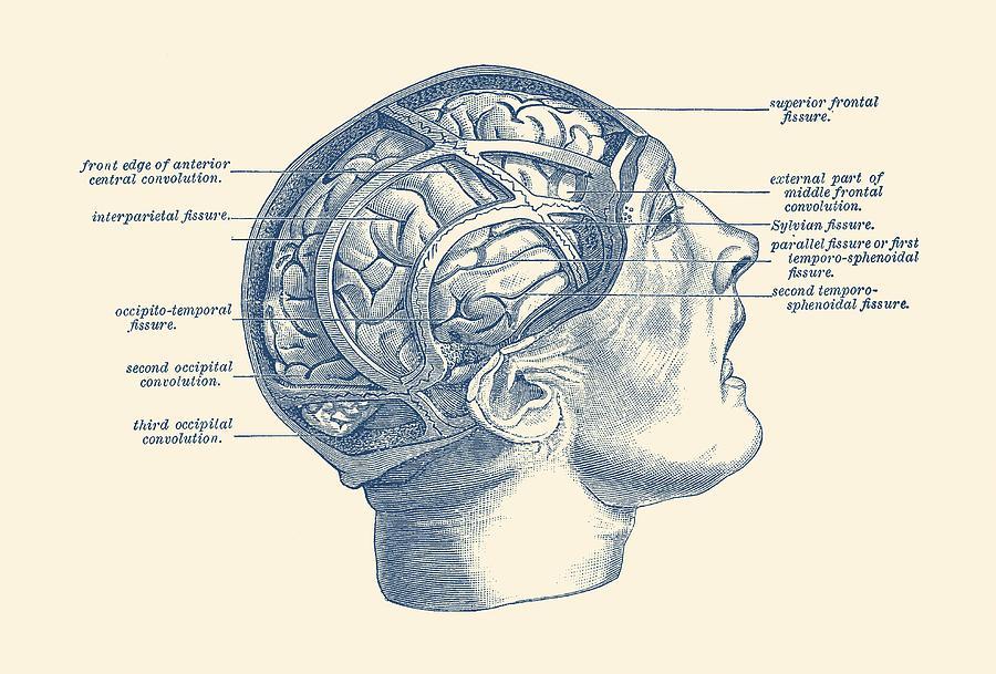 """""""Коронавирус разрушает мозг?"""